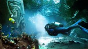 Hollywood Insiders building artificial reefs