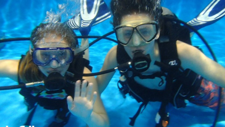 BE A DIVER Pool generates significant media attention