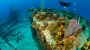 DEMA ALERT: Dive Industry Urged to Act NOW on Cayman Islands Cruise Ship Project