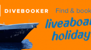 Divebooker.com offers new marketing opportunity for Liveaboard Vessels