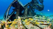 Cruise Ship Association Weighs In on Proposed Cayman Islands Berthing Facility