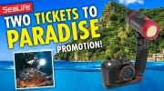 "SeaLife offers ""Two Tickets to Paradise"" Underwater Photography  Dive Trip Sweepstakes"
