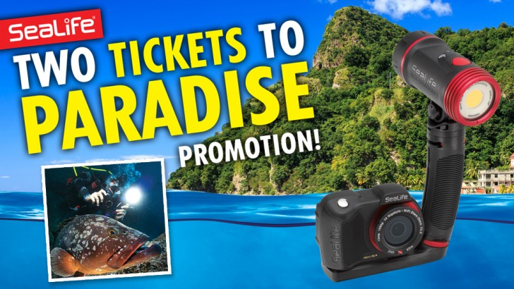 """SeaLife offers """"Two Tickets to Paradise"""" Underwater Photography  Dive Trip Sweepstakes"""