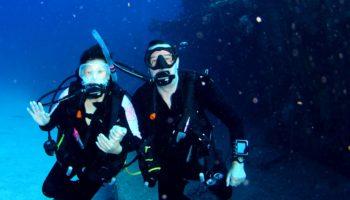 Dive News Wire - DiveNewswire