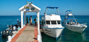 Dive Paradise COVID-19 Policies Offer Maximum Flexibility and Security