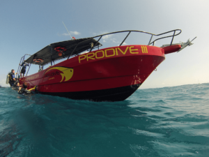 "PRO DIVE INTERNATIONAL Reveals ""ULTRA-LOW-RATE"" DEMA Show Specials"
